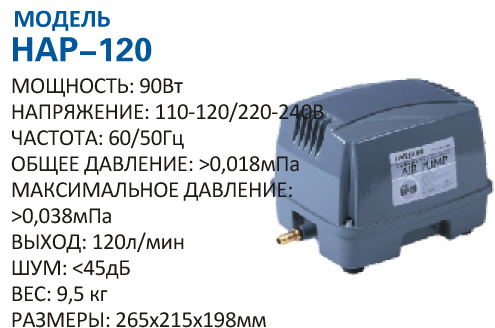 hap-120.jpg